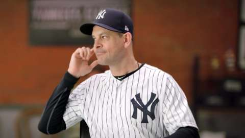Video: Buzz in the Bronx